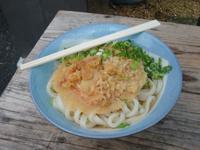 これが香川県人がナンバー1の評価をしているうどんだ。大(2玉)に天ぷらをトッピングして合計300円なり。これが旨かった!