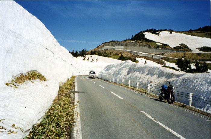 春の志賀・草津道路。また今年も行きたいな