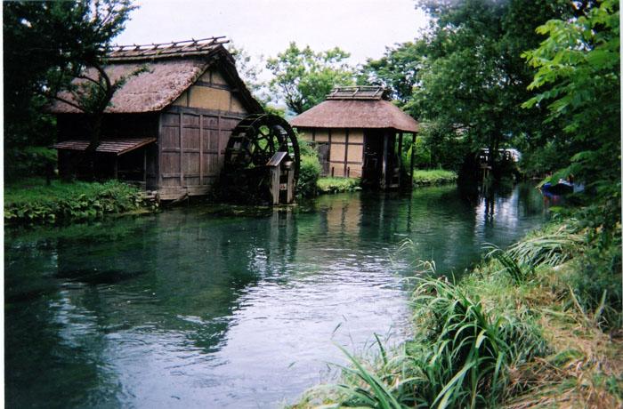 長野県の「大王ワサビ農場」 この水車有名だよネ