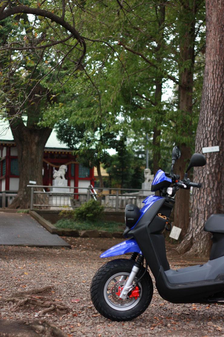 木々の中に佇むお蕎麦屋さん「玉乃屋」をバックにBW'Sと一緒にパチリ。杉の皮をつかっているというお店の屋根がいいかんじ♩ う〜ん画になるわね!