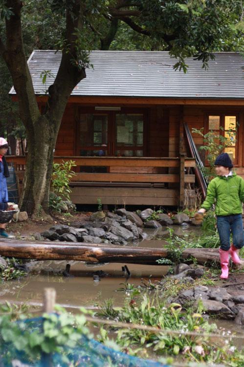 やごの楽校という建物の前には「みんなのとんぼの池」があり、小魚やトンボのヤゴなんかがいます。大人や子供が定期的にボランティアで手入れをしているんですよ