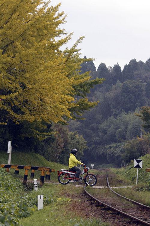 千葉県にはこういった素晴しい景色が沢山あってとても癒される