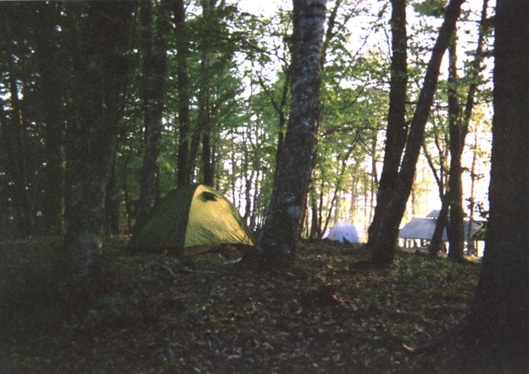 標高1000mの大池高原キャンプ場の朝。清々しい空気、鳥のさえずり、美しい風景。ホント、いい所です♬