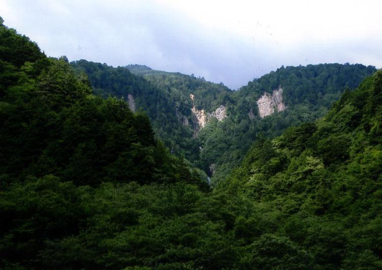 安房峠から松本へ降りていく道は自然がキレイです。写真中央に滝があるのわかります!?