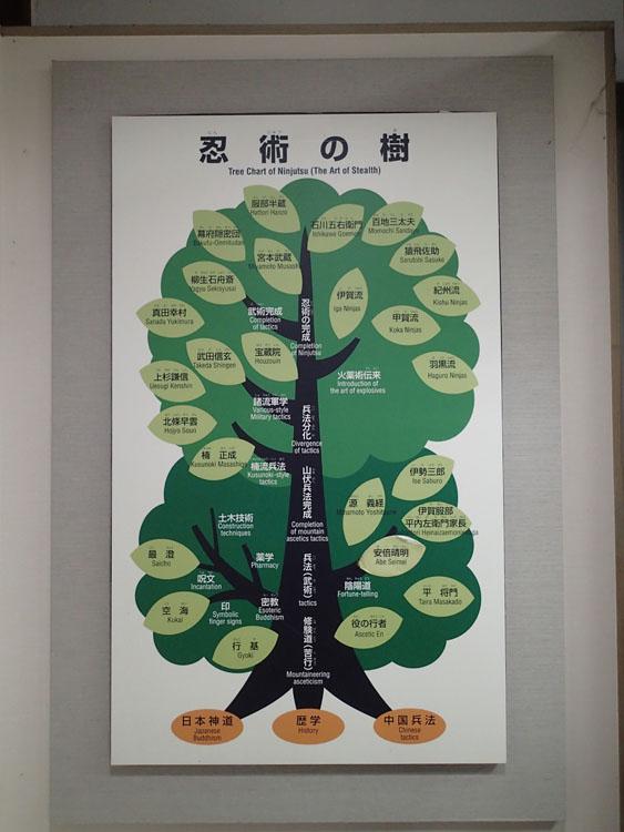 忍者伝承館に展示してあった「忍術の樹」。服部半蔵、猿飛佐助以外に、よく見ると宮本武蔵や武田信玄、真田幸村などの名前もある。忍術はなかなか奥が深い…