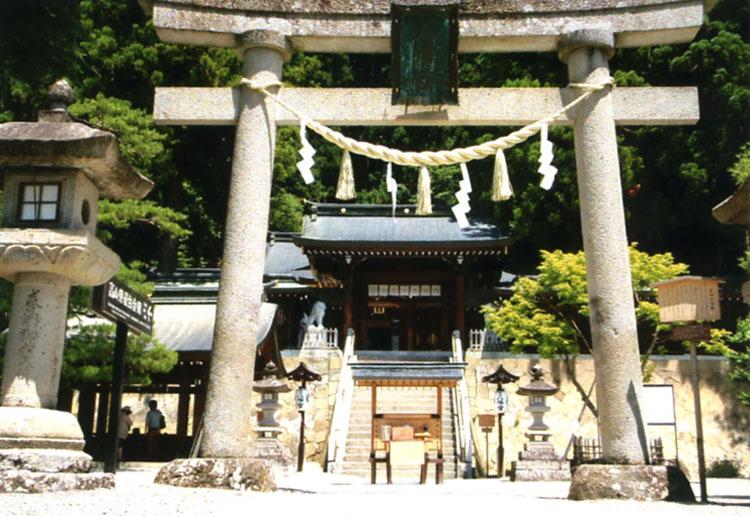 歴史ある桜山八幡宮。神社というのはどこでもそうだけど清々しい空気が流れているので基本的に大好きなんです