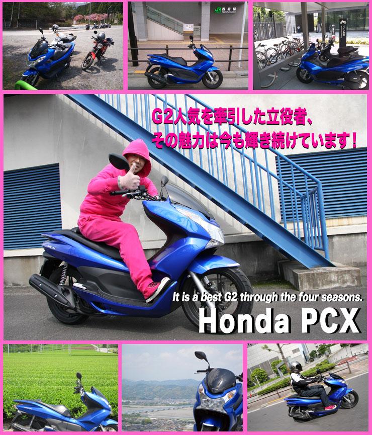 G2人気を牽引した立役者、その魅力は今も輝き続けています!It is a best G2 through the four seasons. Honda PCX