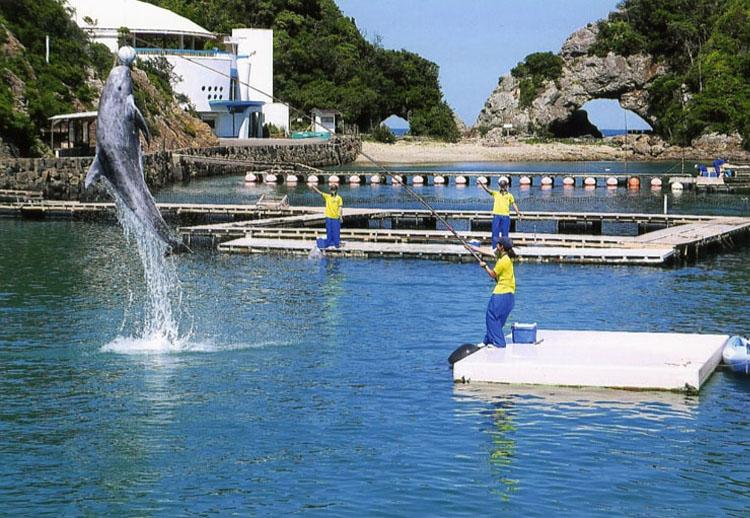 日に何回か、小型のクジラのショーが見られますよ。頭がいい動物だから食べるな!!というのが外国人の意見なんだけど……