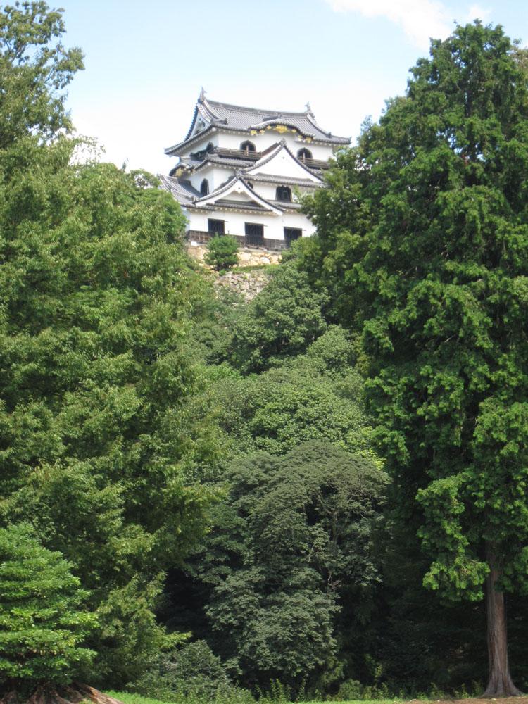 堀端から垣間見える彦根城天守