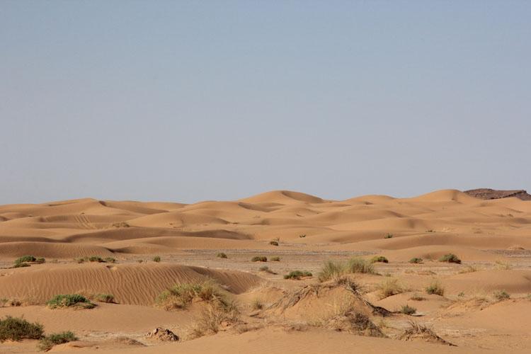 ステージ2のフィニッシュラインの近くまで砂丘が迫っていた。