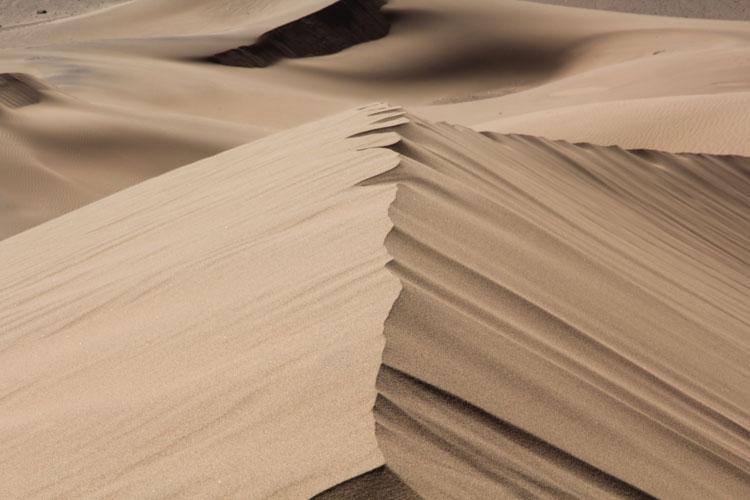 崖のように続くテーブルマウンテン、その手前の小さい砂丘群の中にフィニッシュは設けられた。1キロ四方ほどの砂丘に向かってライダー達は全力で進んでくる