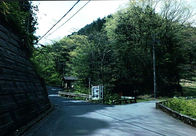 左へ進むと「竹寺」。明治の神仏希釈に遭わなかった混合のお寺だそうですよ