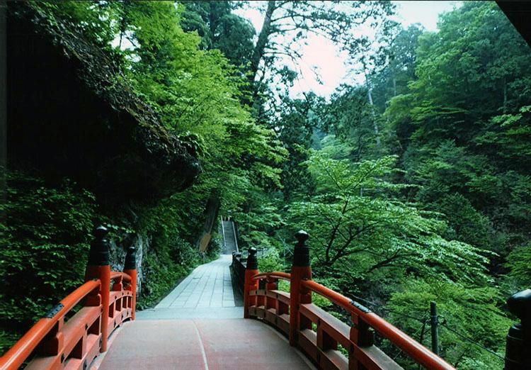 深い森の中に作られた道をどんどん進む。気分が洗われていくようだ