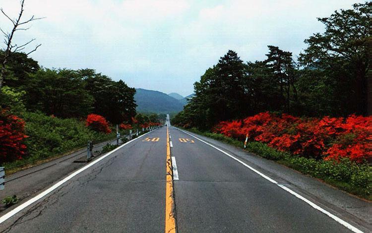 榛名湖メロディラインを走ります。風景も美しいし、サイコーだぜィ!!