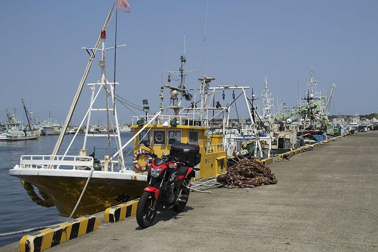 時間が遅かったので人は少なめですが 朝の活気が凄い銚子港