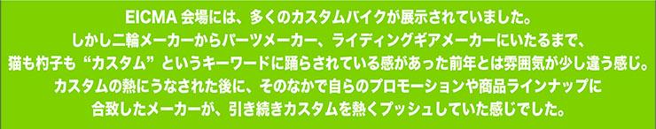 04_lead.jpg
