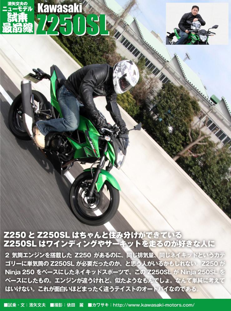 z250sl_run_title.jpg