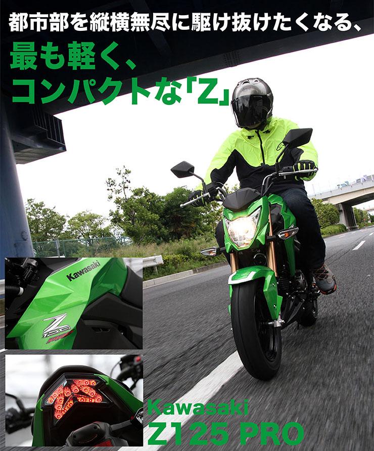 z126_pro_run_title.jpg