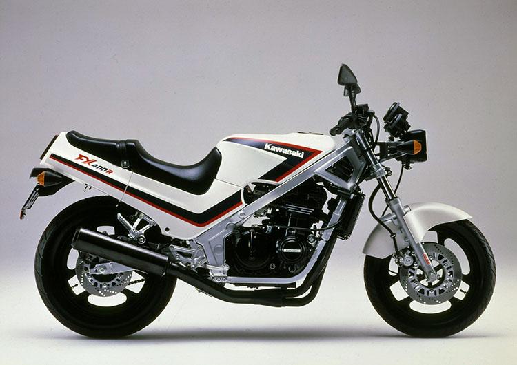 FX400R(E2) パールアルペンホワイト