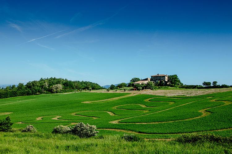 トスカーナの丘に造られたトレーニングコース