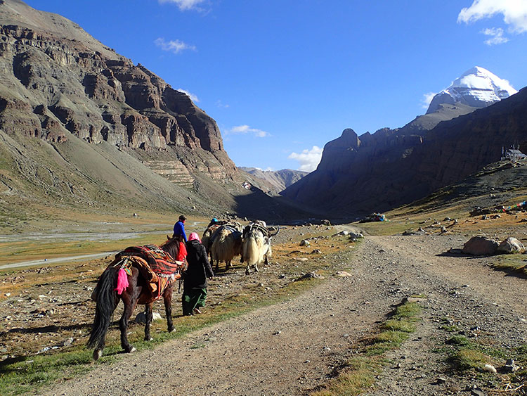 巡礼者たちはカイラス山麓の道を右回りに周回する。