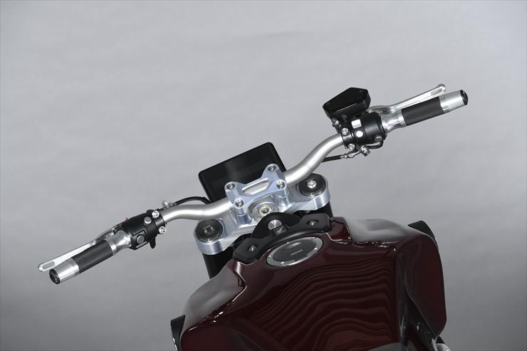 05_Honda_Riding_Assist-e_015H.jpg