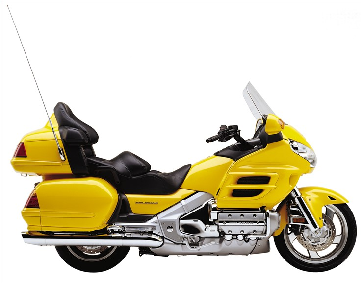 01_GoldWing.jpg