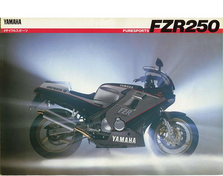 FZ250PHAZER(3HX2)