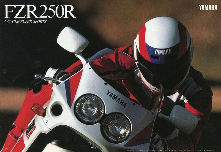 FZR250R(3LN1)