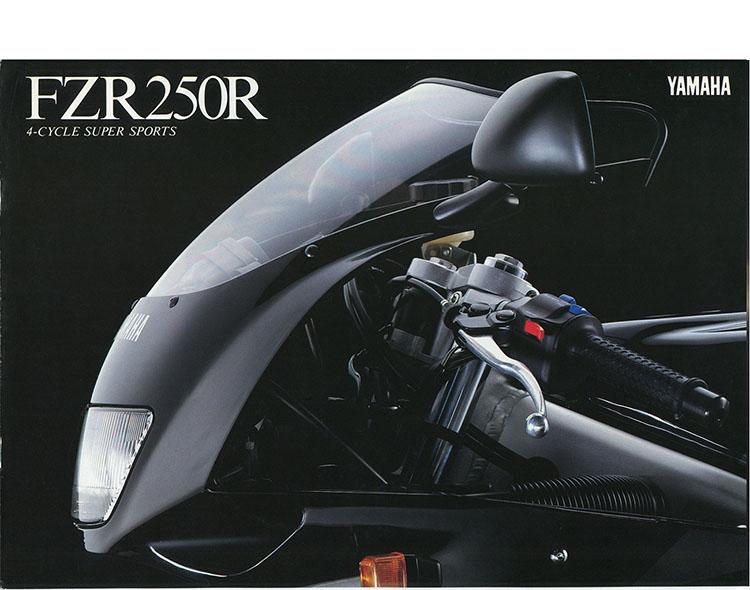 FZR250R(3LN3)
