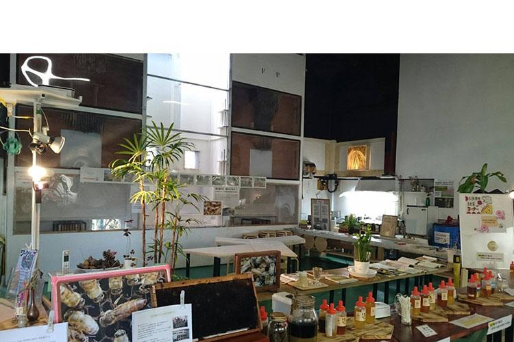 併設されている『みつばちミュージアム』には、ハチミツの販売の他、試食も可能。花によって味が違うのがわかる!