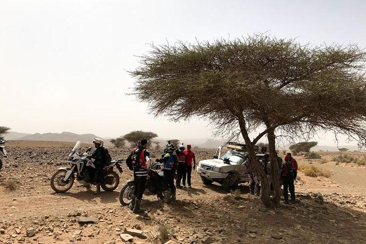 砂漠の中の道は変化に富み飽きることがない。休憩はやはり木陰で
